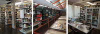 The Department Library